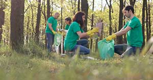 Nonprofit workers cleaning up a forest